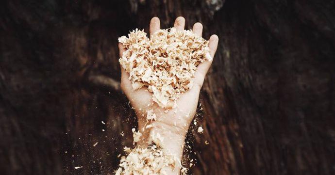 Mužská ruka s drevenými pilinami