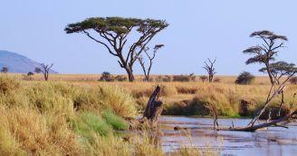BeWooden - Deň Afriky: Ako pomáha BeWooden africká edícia?