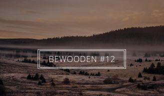 BeWooden - BeWooden Spravodajca #12